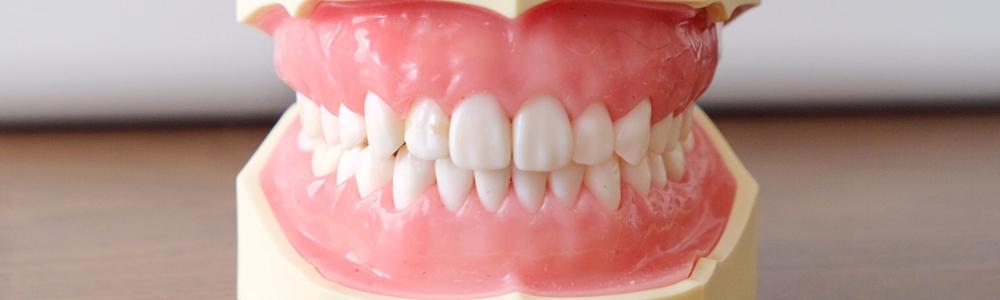 専門の指導医とともに、美しく、機能的な歯を実現します。